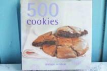 Philippa Vanstone «500 cookies»